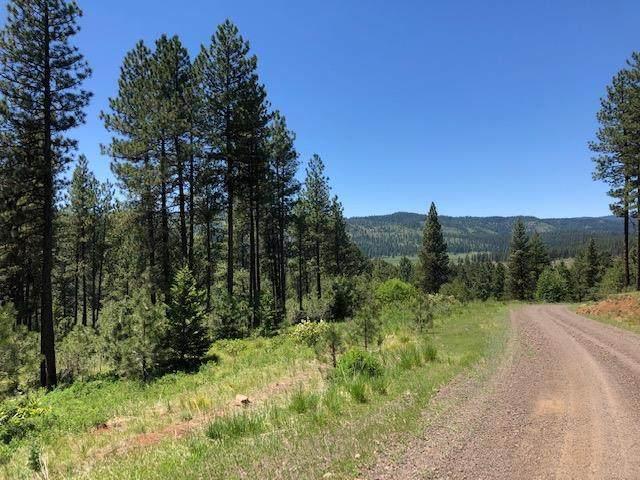 TBD Tamarack View Drive, New Meadows, ID 83654 (MLS #532693) :: Boise River Realty