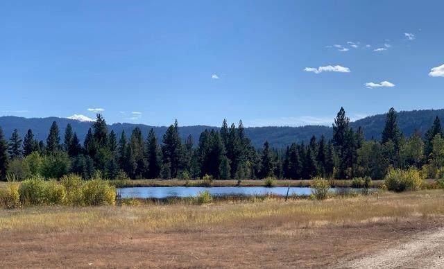 11 Wakerrobin Circle, McCall, ID 83638 (MLS #533281) :: Boise River Realty