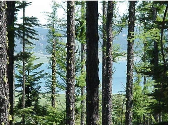 76 Arling Trail, Cascade, ID 83611 (MLS #533316) :: Boise River Realty
