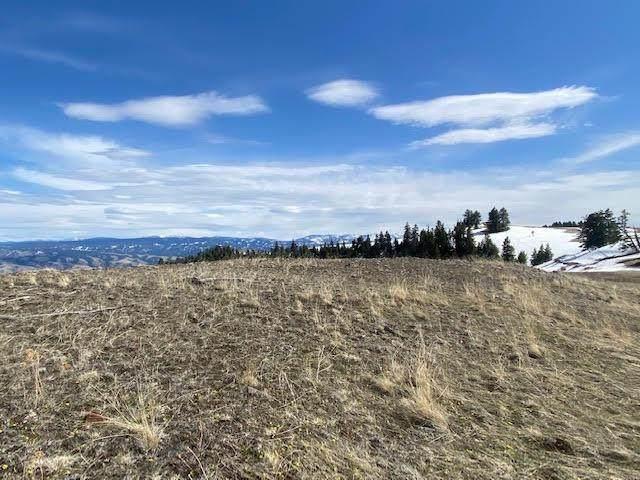94 Pilgrim Ridge Road, White Bird, ID 83554 (MLS #532076) :: Boise River Realty
