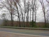 10985 Highway 57 Hwy - Photo 6