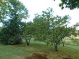 9428 May Branch Loop - Photo 15