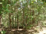 177 Lake Bluff Path - Photo 3