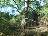 7 Caney Branch Rd - Photo 4