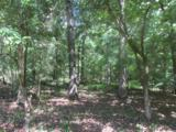 335 Deer View Ln - Photo 21