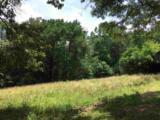 600 Snake Creek Loop - Photo 25