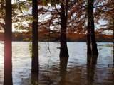43 Chisholm Lake Rd - Photo 3