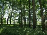 24 Leatherwood Ln - Photo 7