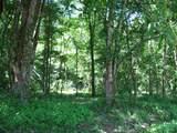 27 Leatherwood Ln - Photo 5