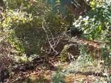 511 Bear Creek Road Hwy - Photo 8