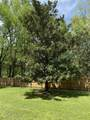2447 Birchtree Dr - Photo 21