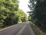 0 Lake Trail Loop - Photo 3