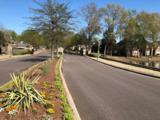 1810 Houston Levee Rd - Photo 3