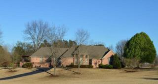10148 Santa Rosa Dr, Unincorporated, TN 38004 (#10000162) :: The Wallace Team - Keller Williams Realty
