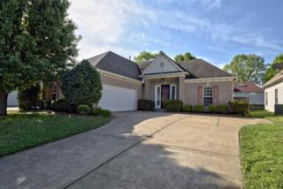 8435 Shady Elm Dr, Memphis, TN 38018 (#10000168) :: The Wallace Team - Keller Williams Realty