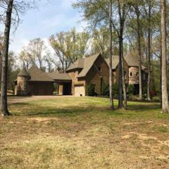 11220 Silsbe Ln, Unincorporated, TN 38028 (#10000549) :: The Wallace Team - Keller Williams Realty