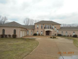 7416 Independence Rd, Millington, TN 38053 (#10000651) :: The Wallace Team - Keller Williams Realty