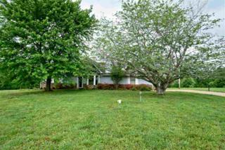 480 Pruitt Rd, Unincorporated, TN 38060 (#10000814) :: The Wallace Team - Keller Williams Realty