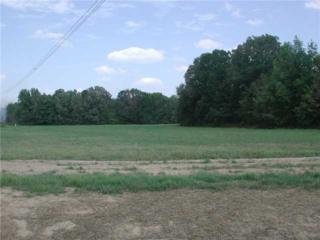 160 Ainsley Manor Dr, Arlington, TN 38002 (#10000848) :: The Wallace Team - Keller Williams Realty