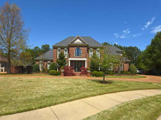 9242 Forest Estates Cv, Germantown, TN 38139 (#10001015) :: The Wallace Team - Keller Williams Realty