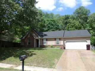 5720 Saranac Ave, Unincorporated, TN 38135 (#10001026) :: The Wallace Team - Keller Williams Realty