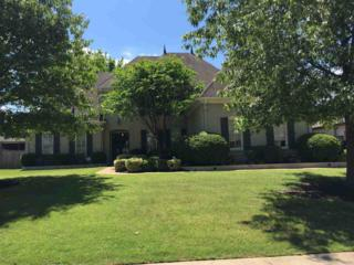641 Ridge Peaks Dr, Collierville, TN 38017 (#10001102) :: The Wallace Team - Keller Williams Realty