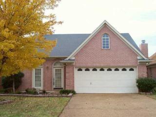 2125 Oak Springs Dr, Memphis, TN 38016 (#10001109) :: The Wallace Team - Keller Williams Realty