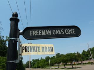 8930 Freeman Oaks Cv, Cordova, TN 38018 (#10002078) :: RE/MAX Real Estate Experts