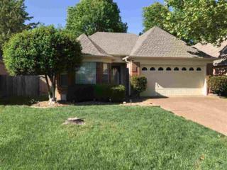 8930 Lake Springs Cv, Cordova, TN 38016 (#10002305) :: RE/MAX Real Estate Experts