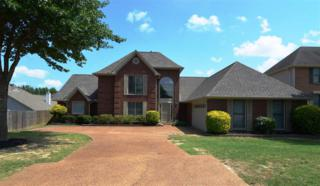 9799 Windward Slope Dr, Lakeland, TN 38002 (#10002699) :: RE/MAX Real Estate Experts
