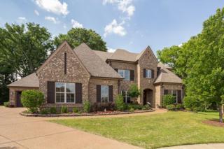 5262 Purple Moor Cv, Lakeland, TN 38002 (#10003232) :: RE/MAX Real Estate Experts
