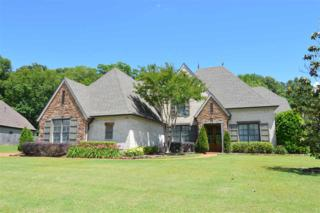 5468 Scarlet Ridge Dr, Arlington, TN 38002 (#10003255) :: RE/MAX Real Estate Experts