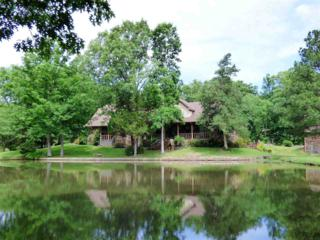 3876 Brunswick Rd, Bartlett, TN 38133 (#10003277) :: RE/MAX Real Estate Experts