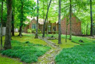829 N Tree Dr, Collierville, TN 38017 (#10003296) :: RE/MAX Real Estate Experts
