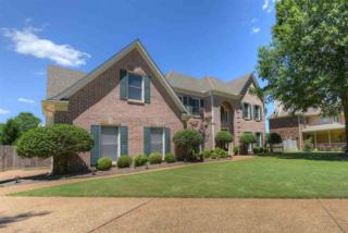 982 Handforth Cv, Collierville, TN 38017 (#10003307) :: RE/MAX Real Estate Experts