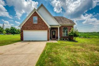 3193 Tracy Rd, Unincorporated, TN 38004 (#9992875) :: The Wallace Team - Keller Williams Realty
