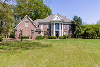 11756 Spring Manor Ln, Unincorporated, TN 38028 (#9999607) :: The Wallace Team - Keller Williams Realty
