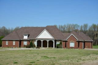 11796 Metz Dr E, Unincorporated, TN 38028 (#9999893) :: The Wallace Team - Keller Williams Realty