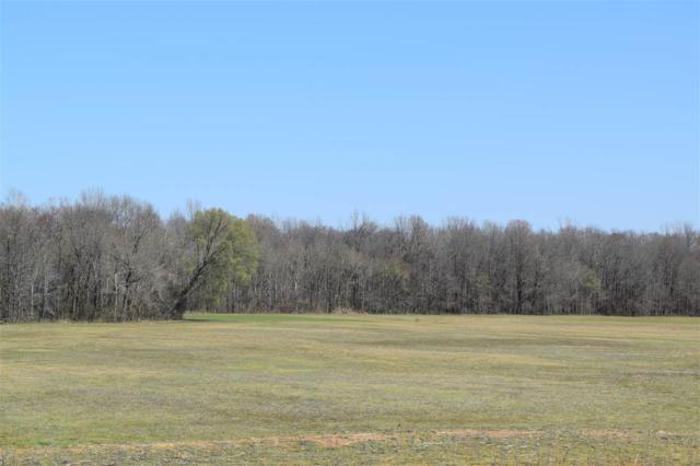 2000 Nuckolls Rd, Bolivar, TN 38008 (MLS #10000000) :: The Justin Lance Team of Keller Williams Realty