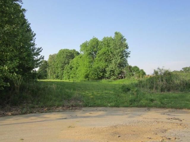 LOT 16 Timber Ln, Ripley, TN 38063 (#10002230) :: The Wallace Team - RE/MAX On Point