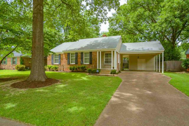 5320 Chickasaw Rd, Memphis, TN 38120 (#10005403) :: The Wallace Team - RE/MAX On Point