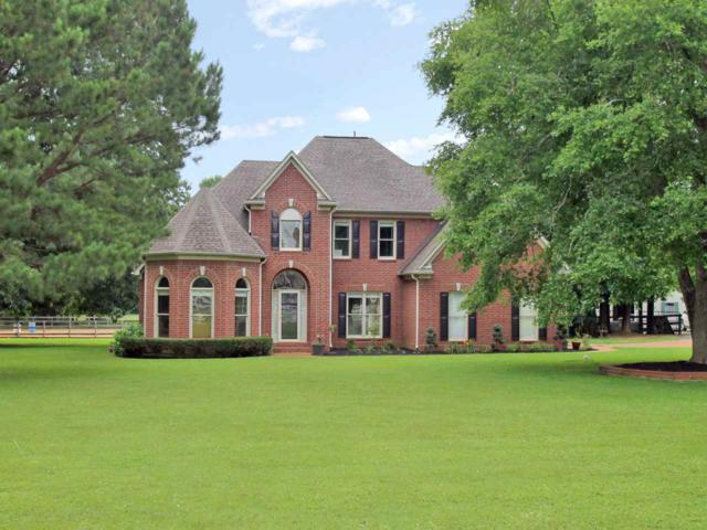4540 Planters Trace Ln, Collierville, TN 38017 (#10005485) :: The Wallace Team - RE/MAX On Point
