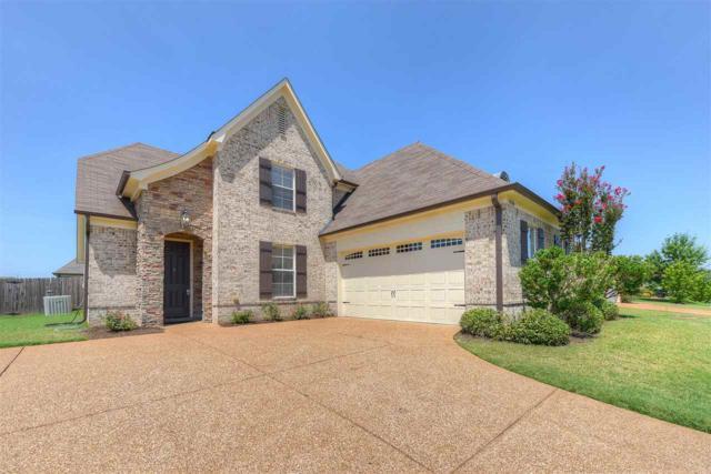 10206 Needle Pine Dr, Cordova, TN 38016 (#10007344) :: RE/MAX Real Estate Experts