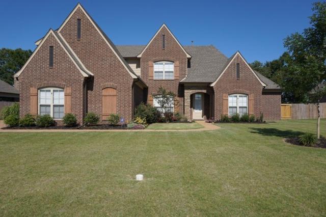 6386 Anglia Valley Dr, Arlington, TN 38002 (#10007599) :: RE/MAX Real Estate Experts