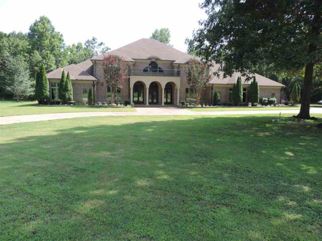 310 Fields Dr, Unincorporated, TN 38002 (#10007644) :: RE/MAX Real Estate Experts