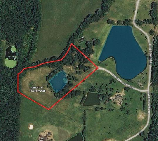 0 Harrell Dr, Arlington, TN 38002 (#10007798) :: RE/MAX Real Estate Experts