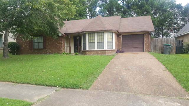 6644 Elkgate Dr, Memphis, TN 38141 (#10008731) :: The Wallace Team - RE/MAX On Point