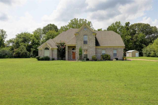 295 Crooked Creek Dr, Unincorporated, TN 38060 (#10008786) :: The Wallace Team - RE/MAX On Point