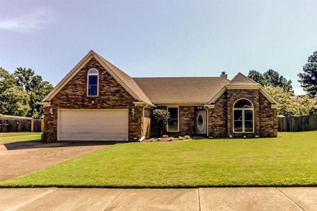 5066 Springtree Dr, Bartlett, TN 38002 (#10009608) :: The Wallace Team - RE/MAX On Point