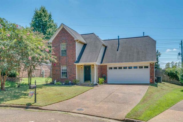 8907 Fulton Cv, Memphis, TN 38016 (#10009638) :: ReMax On Point